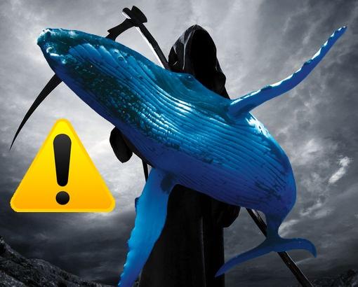 modrá veľryba